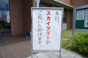 田んぼアート3_4